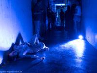 Visionäre Kraft – Young Urban Performances wird ausgezeichnet